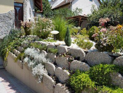 Családi ház kertje - kert / udvar ötlet