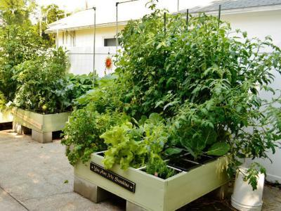 Magaságyás - kert / udvar ötlet, rusztikus stílusban