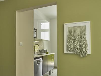 Színes fal a konyha előtt - belső továbbiak ötlet, modern stílusban