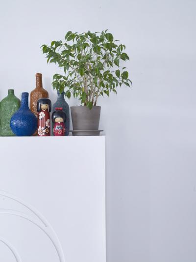 Pasztell színű fal - belső továbbiak ötlet, modern stílusban