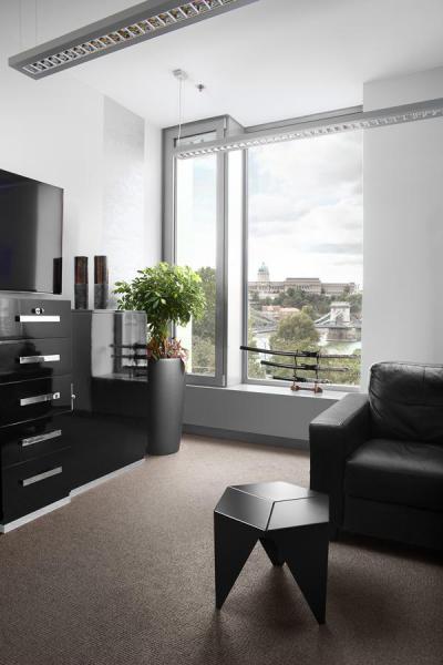 Fekete bútorok az irodában - nappali ötlet, modern stílusban