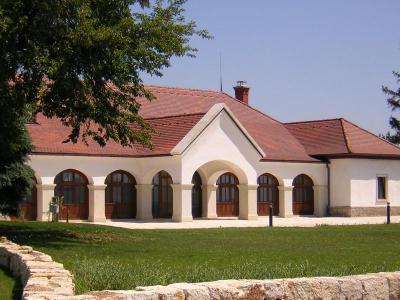 TONDACH® Hódfarkú kerámia tetőcserép antik színben - tető ötlet, klasszikus stílusban