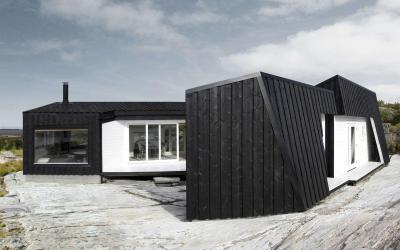 Fekete fehér homlokzat - homlokzat ötlet, modern stílusban