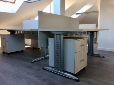 Világos Lakeland akác, Déli kőris és prégelt, világosszürke színű irodabútorok - belső továbbiak ötlet, modern stílusban