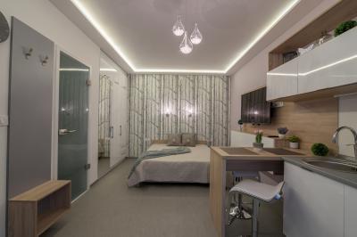 Stúdiólakás egyterű konyha-hálóval - háló ötlet, modern stílusban
