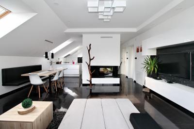 Monokróm nappali tetőtéri ablakokkal - nappali ötlet, modern stílusban