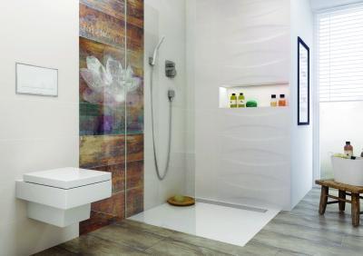 Dekoratív csempe a zuhanyfülkében - fürdő / WC ötlet, modern stílusban