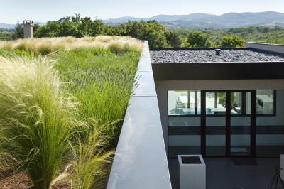 Kert a tetőn - BMI Villas extenzív zöldtető  - tető ötlet, modern stílusban