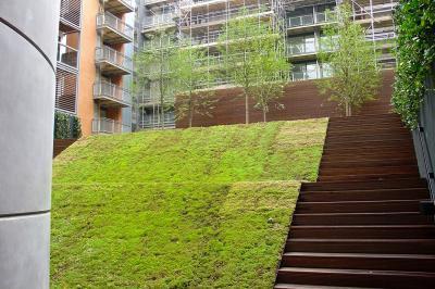 Zöldtető - tető ötlet, modern stílusban