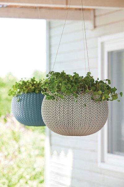 Műanyag kaspó - kert / udvar ötlet, modern stílusban