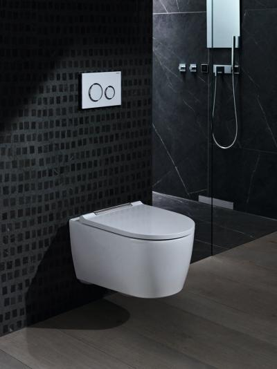 Peremmentes wc innovatív működtető lappal - fürdő / WC ötlet
