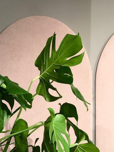 Falpanelek - nappali ötlet, modern stílusban