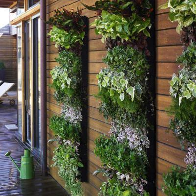 Virágcserepek a falon - kert / udvar ötlet, modern stílusban