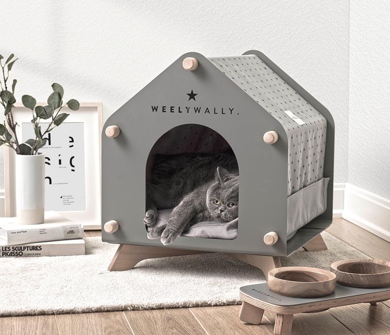 Kislakások cicáknak és kutyáknak otthon intro_0
