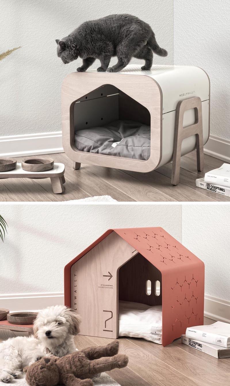 Kislakások cicáknak és kutyáknak otthon full_0